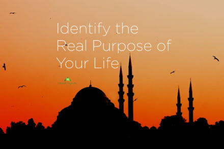 Identify the Real Purpose of Your Life